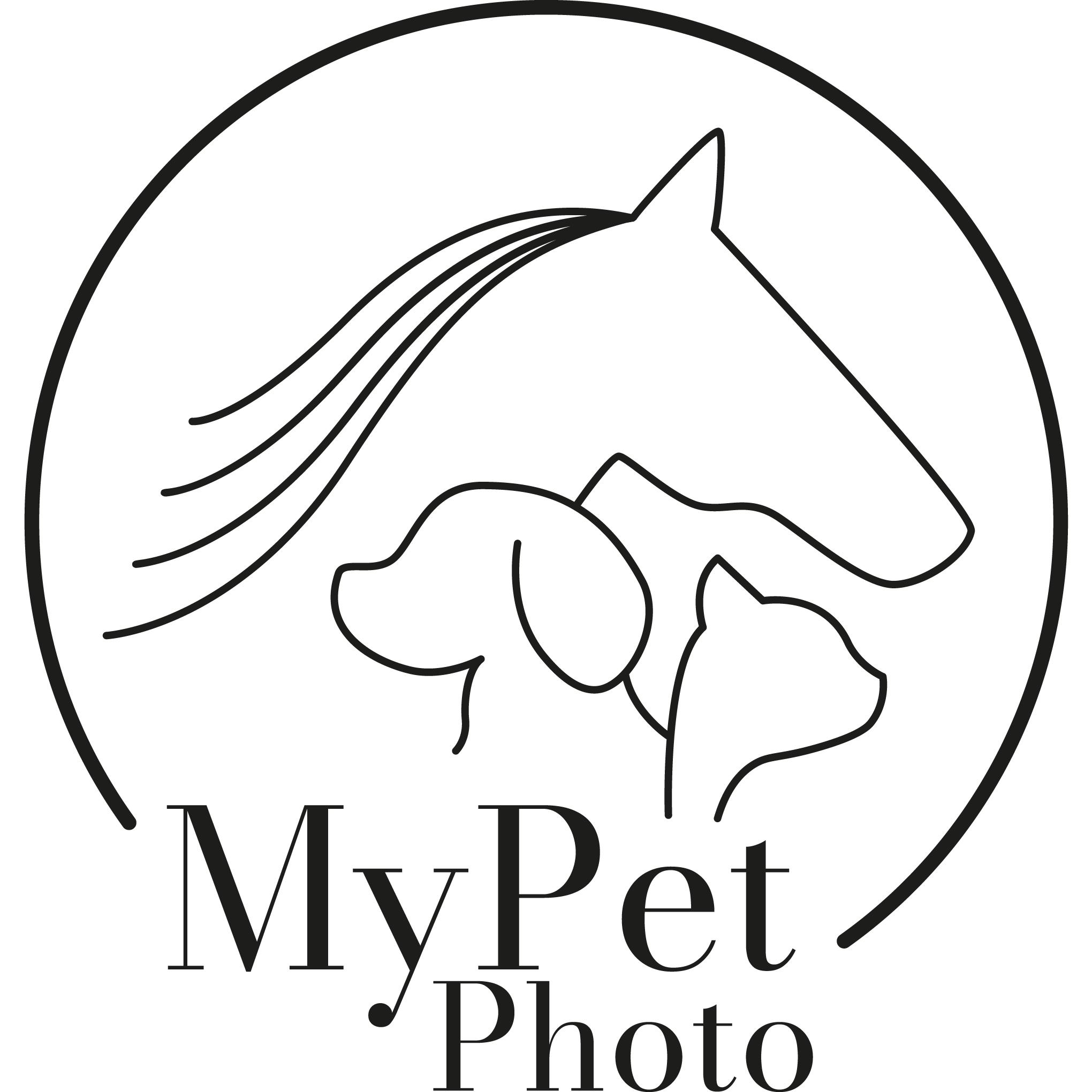 MyPetPhoto - Kisállat fotózás